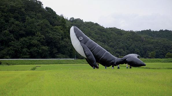The Name of the Whale (Fujikawa Fumito)