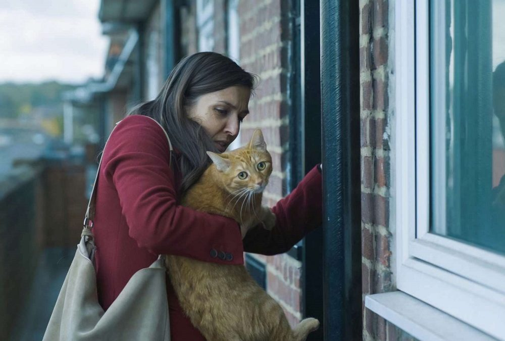 Cat in the Wall (Mina Mileva y Vesela Kazakova) – Festival ArteKino